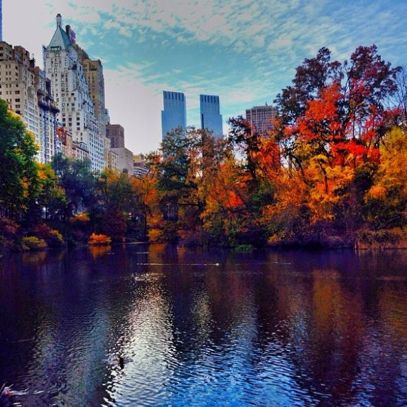 fall-in-the-city