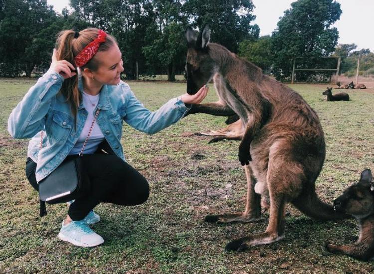 Kangaroo Island Is An Immersive Aussie Animal Playground