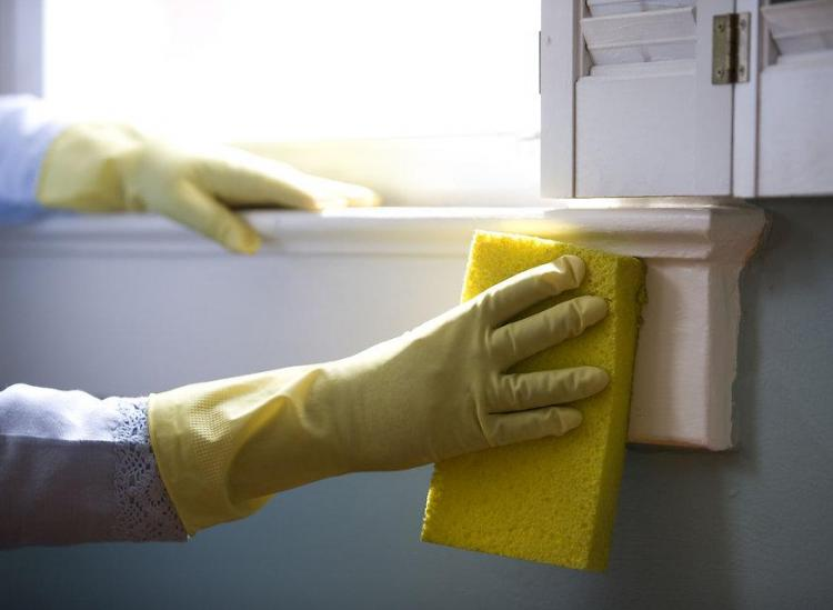 Here Are The Most Efficient Natural Cleaning Products