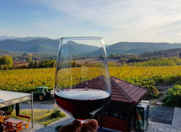 Wine Hipsters, Here's Why You Should Be Going To The Balkans For Vino