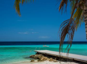 Choose Your Own Adventure: Here's The Best Caribbean Island For You