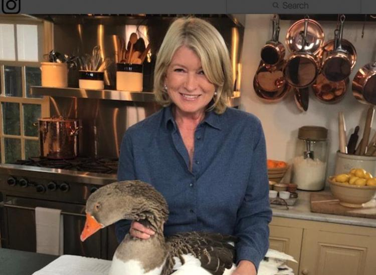 Martha Stewart Chopped