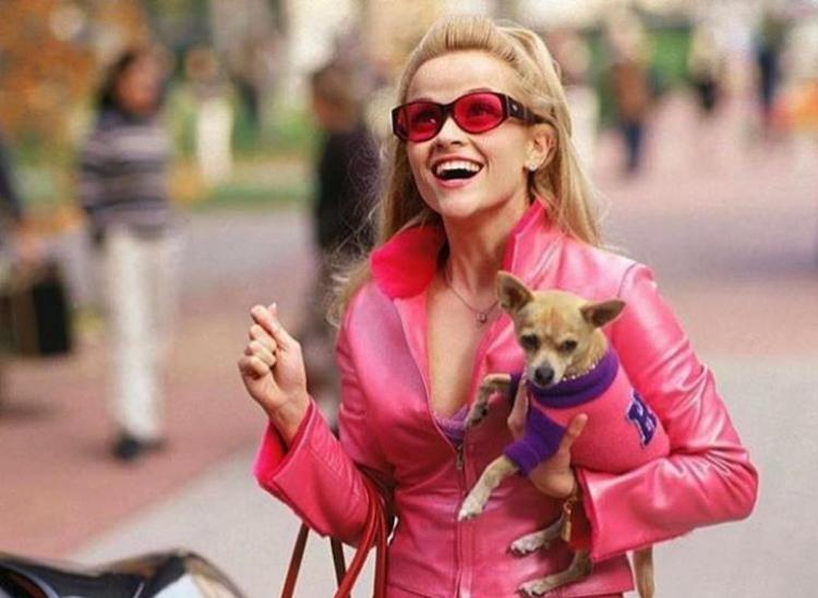 life lessons from legally blonde
