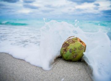 3 Innovative Coconut Products That Will Kick Your Health Up A Notch