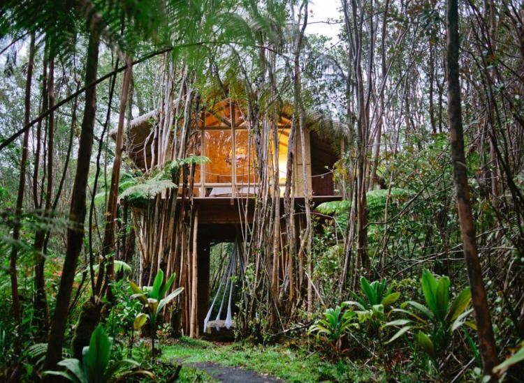 Hawaii treehouse Airbnb