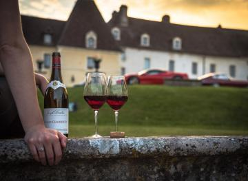 Everything You Need To Know About Bringing Wine Home As A Souvenir