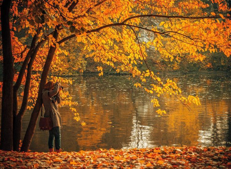 fall vacation