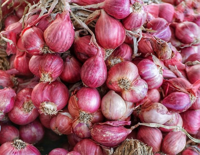 how to cook with different onions