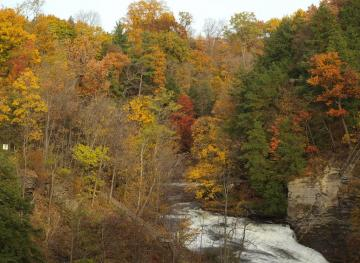 Head To Ithaca, New York To Experience 150 Waterfalls Within 10 Miles