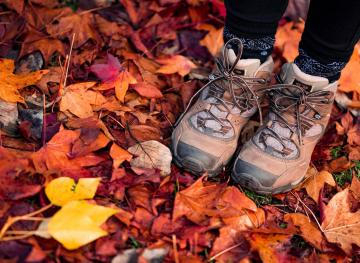 How To Pick The Best Hiking Shoes For You