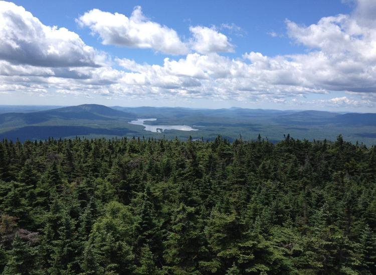 The Long Trail In Vermont Is America's Oldest Long-Distance Hiking Trail