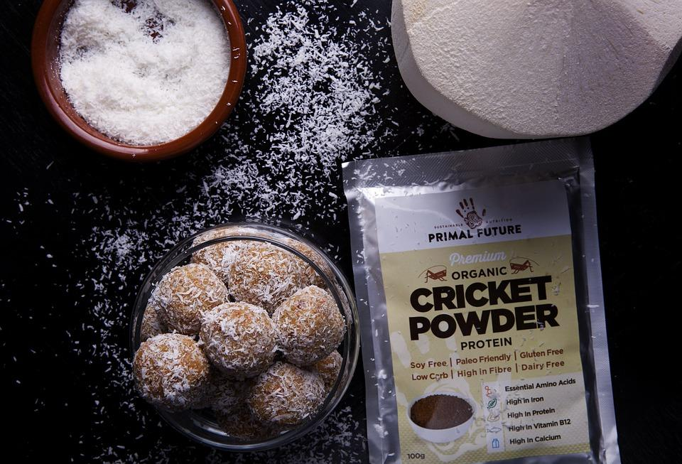insect protein powder