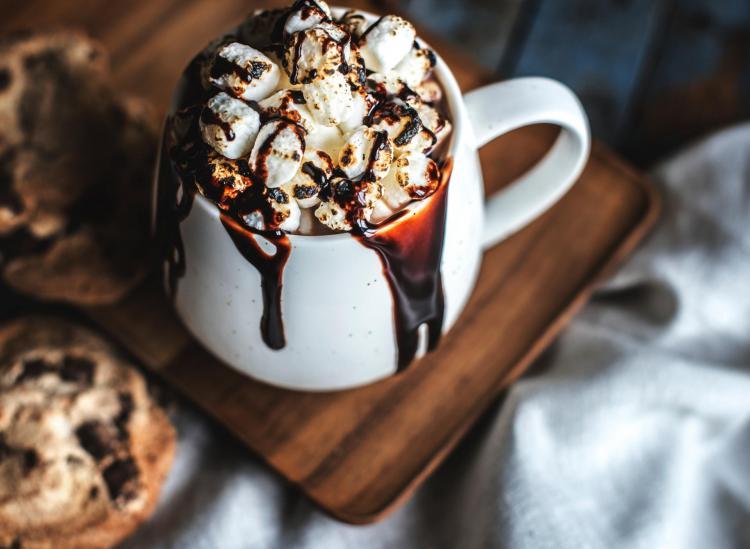 best hot chocolate brands