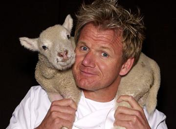 8 Spicy Facts You Didn't Know About Gordon Ramsay