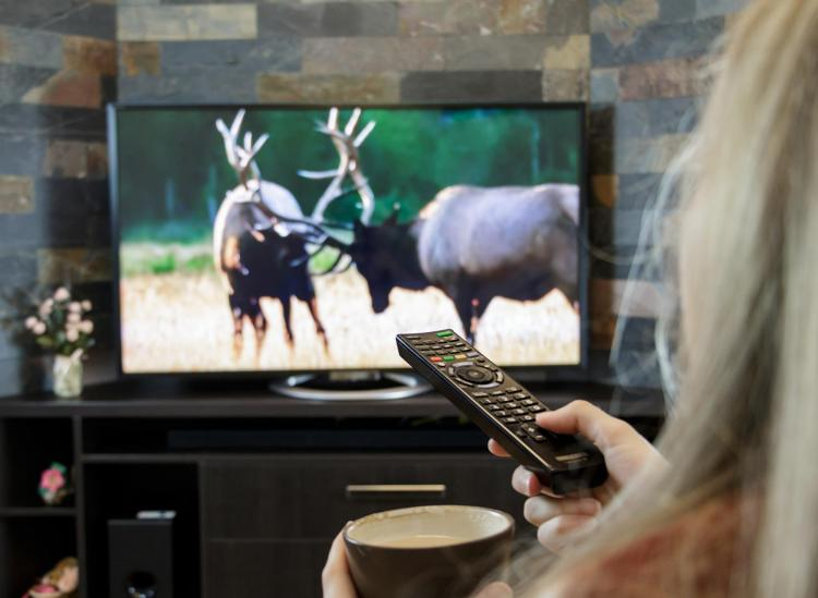 The Ultimate Guide To TV Streaming Services