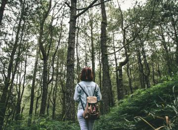Forest bathing is a must